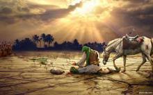 چرا امام حسین (ع) در کربلا طلب باران نکرد؟